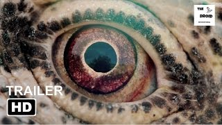 Nonton Voyage Of Time  Life S Journey Trailer  2017    Cate Blanchett  Jamal Cavil  Maisha Diatta Film Subtitle Indonesia Streaming Movie Download