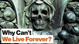 Why Don't Humans Live for More than 100 Years? | Physicist Geoffrey West by Big Think