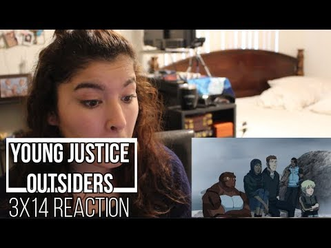 "Young Justice Outsiders 3x14 ""Influence"" Reaction"