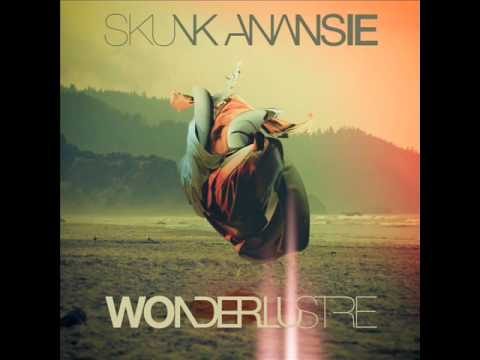 Tekst piosenki Skunk Anansie - You Can't Always Do What You Like po polsku