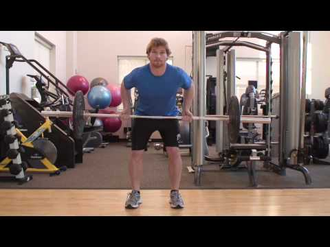 barbell - An advanced level exercise, the barbell row targets the large muscles of the back while challenging the core muscles that are responsible for stabilizing the...