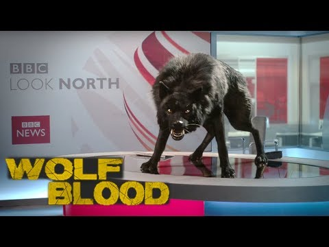 WOLFBLOOD S5E7 - Torn (full episode)