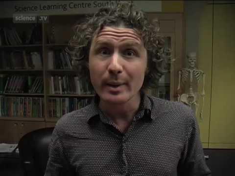 Ben Goldacre om homopati