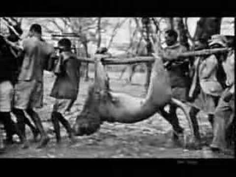 Lion Hunting Massacre