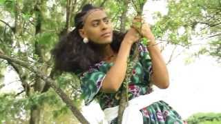 Hot New Traditional Tigrigna Music 2014