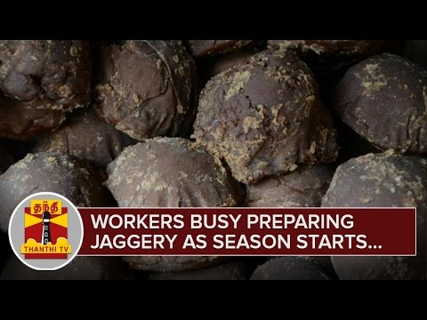 Workers-busy-Preparing-Jaggery-as-Season-Starts--Thanthi-TV