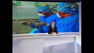 Journal d'Information 12H : 04-04-2020 Canal Algérie