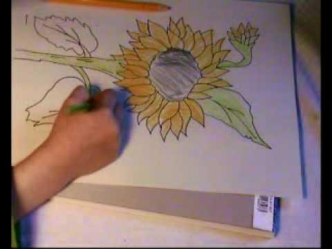 Blumen malen für Kindergarten