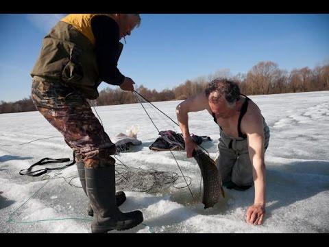 ловят рыбу боровое