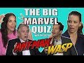 The Cast Of  39 Ant Man And The Wasp 39 Take Our Big Marvel Quiz