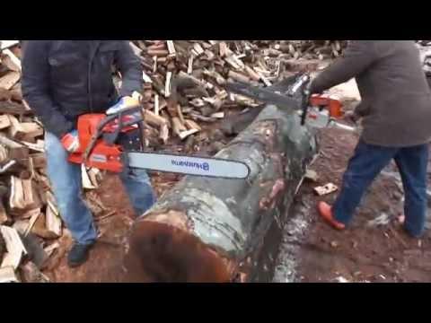 Thumbnail for video Ta_eutyjHCs
