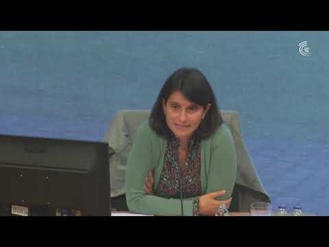 Vorschaubild Livestream auf YouTube: 'Öffentliche Sitzung A1,A3,A4'