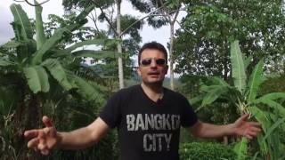 Video Vivre en thailande acheter une maison tomber amoureux, cauchemar et paradis MP3, 3GP, MP4, WEBM, AVI, FLV September 2017