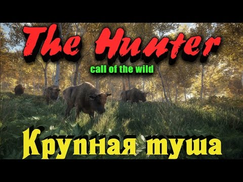 The Hunter Call of the Wild - Крутая добыча (видео)