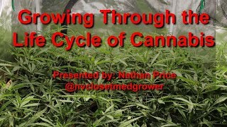 Growing Through the Life Cycle of Cannabis - AUDIO FIXED - Grow Class at Hydro Suite Hydroponics by  NVClosetMedGrower