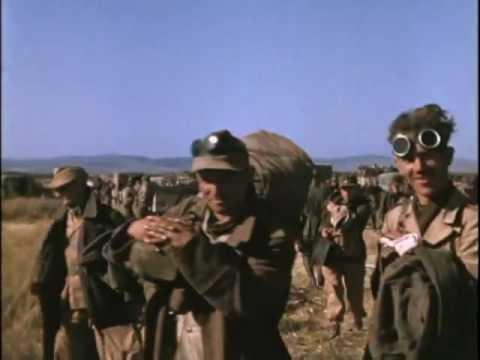 Tunesische Kampagne (1943)