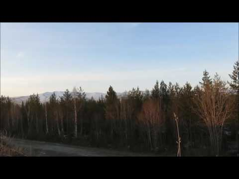 видеообзор, отзывы, описание Манок на гуся, Эхоманъ №24, серия