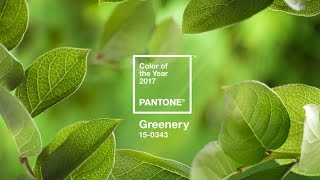Colour of the year 2017 Greenery PANTONE 15-0343