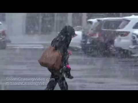 Hempstead, NY Nassau County Heavy Snows - 3/10/2017