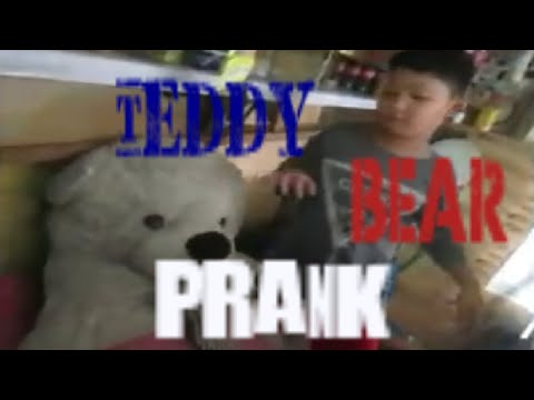 Teddy Bear Prank