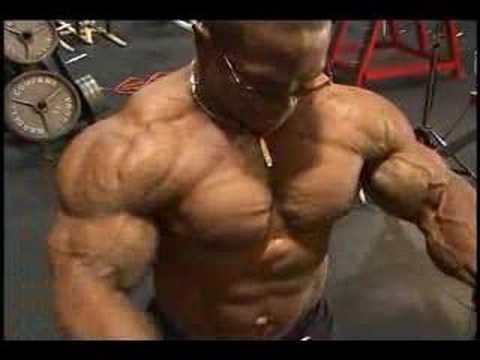 Bodybuilding muscle DVD Guns 7 preview