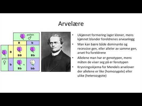 Naturfag - Genetikk, arv og miljø
