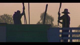 Thaksia Shinawatra's Rural Support Thailand Politics BBC News