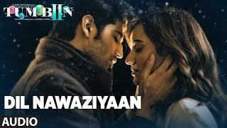 DIL NAWAZIYAAN Full Audio Song Tum Bin 2