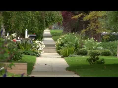 The Lawn Goodbye and California's Water Woes