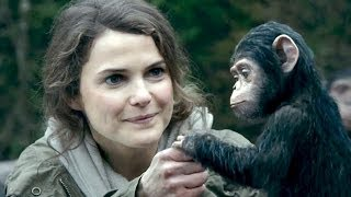 Nonton Dawn Of The Planet Of The Apes   Trailer 2 Film Subtitle Indonesia Streaming Movie Download