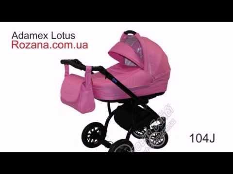 Adamex Lotus универсальная коляска.