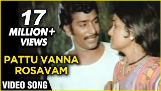 Pattu Vanna Rosavam - Kanni Paruvathile Tamil Song - Male-  Rajesh, Vadivukkarasi