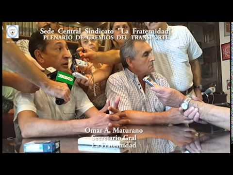 PLENARIO TRANSPORTE 14 01 15