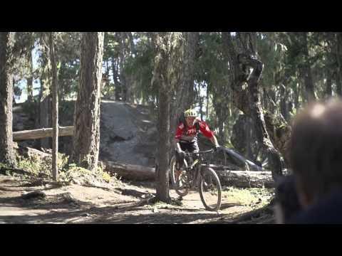 BMC Trailfox TF01 29 XX1