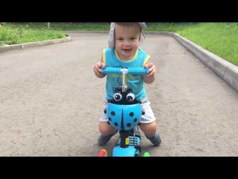 Купить Детский Трехколесный Самокат Explorer Alfa 5 в 1 Красный