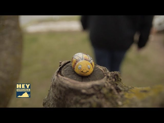 Caught Doing Something Good: Shenandoah Valley Rock Painting Group