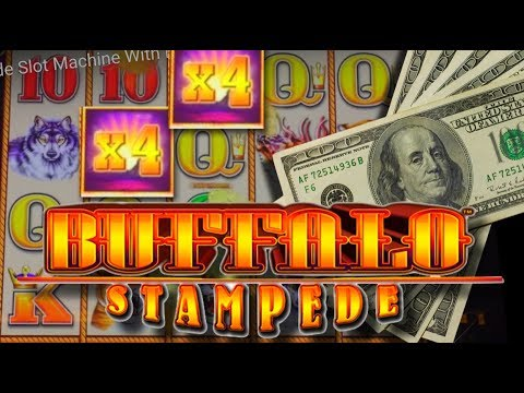 LIVE PLAY on Buffalo Stampede Slot Machine With Bonus and HUGE WIN!!!