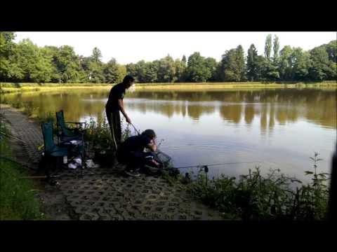 Grauvell - In diesem Video zeigen wir einen Vormittag beim Feedern mit der Specialist HT Plus von der Firma Grauvell an unserem Vereinsgewässer. Der Spaß kam nicht zu k...