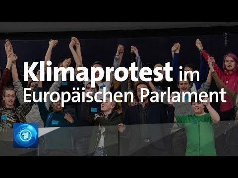 """""""Fridays for Future"""": Protest von Klimaaktivisten im EU-Parlament in Straßburg"""