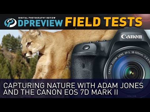Capturing Nature with the Canon EOS 7D Mark II