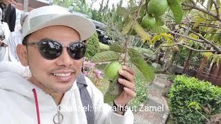 Video FIKOH FOMAL Jalan-Jalan Bersama Keluarga MP3, 3GP, MP4, WEBM, AVI, FLV September 2019
