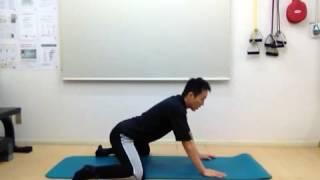 【ケア不足になりやすい部位】内転筋のストレッチ【股関節の柔軟性UP】