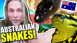 AUSTRALIAN SNAKES AND LIZARDS!!! **Lori sings FROZEN** Brian Barczyk by Brian Barczyk