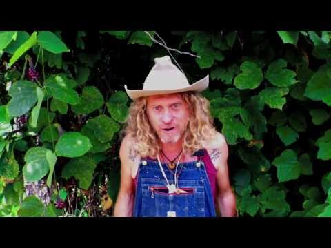 Tennessee Walker Mare Official Video - Jimbo Mathus & The Tri-State Coalition