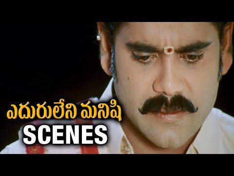 Video Eduruleni Manishi Movie Scenes | Nasser insults Nagarjuna | Soundarya | Brahmanandam | Ali download in MP3, 3GP, MP4, WEBM, AVI, FLV January 2017