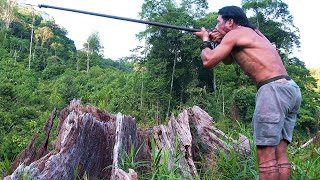 Video Borneo Death Blow - full documentary MP3, 3GP, MP4, WEBM, AVI, FLV Januari 2019