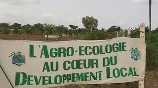 Agroecology and climate change