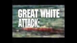 Video The Jersey Beach Attacks Of 1916 MP3, 3GP, MP4, WEBM, AVI, FLV Oktober 2018