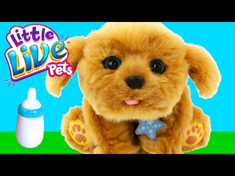 Little Live Pets Snuggles Interactive Puppy Stuffed Animal