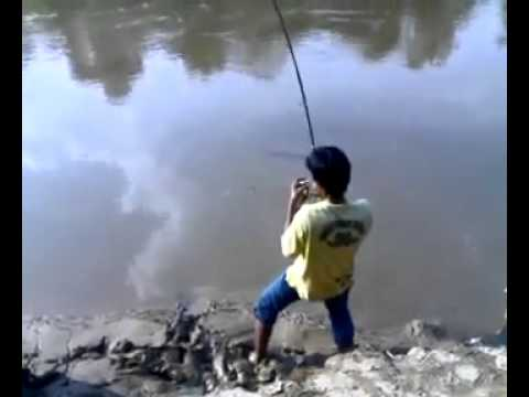 This Kid Fighting A Giant Monster Fresh Water Fish For 15 Minutes And Eventually Got It